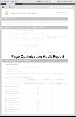 Page Optimiation Audit Report