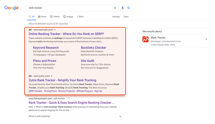 Paid Advertising in SERPs