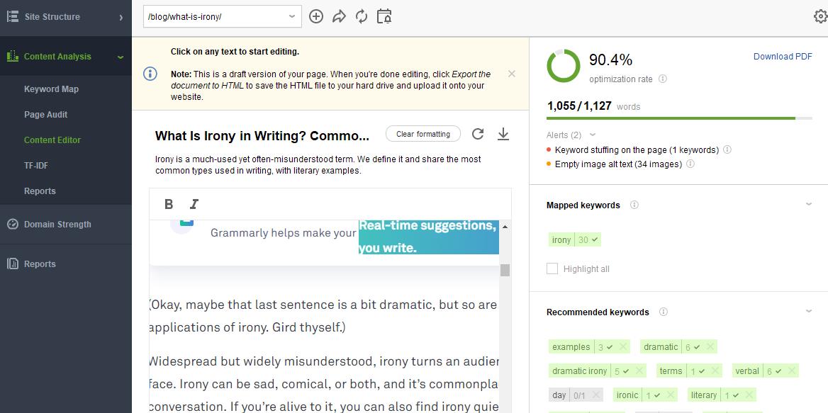 website auditor content editor